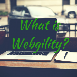 What-is-Webgility