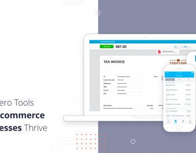 Xero Tools Help Ecommerce Businesses Thrive