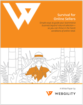 Survival for Online Sellers white paper